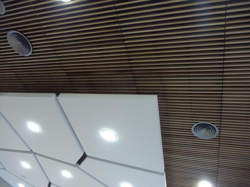 Détail d'un des éléments du plafond, Vivadour